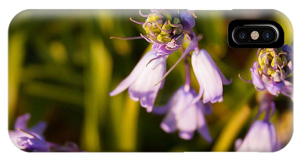 IPhone Case featuring the photograph Blooming Bluebells by Joe Winkler