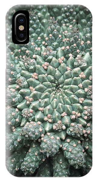 Blooming Geometry IPhone Case