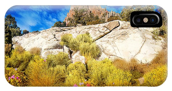 Blooming Nevada Desert Near Ely IPhone Case