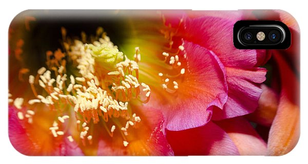 Blooming Pink Explosions  IPhone Case