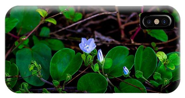 Blooming Vine IPhone Case