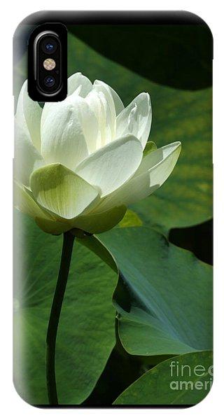 Blooming White Lotus IPhone Case