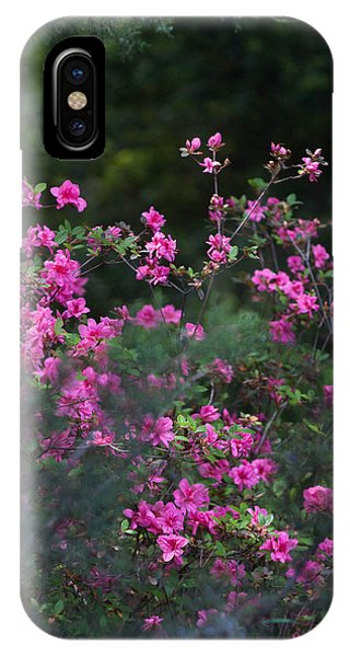 Blooms Of Pink Phone Case by Lezlie Faunce