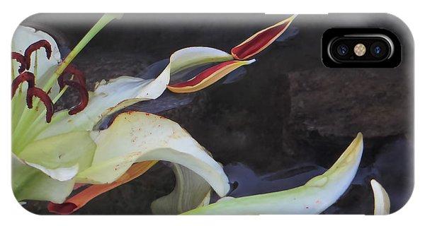 Blossom Rain 16 Phone Case by Georg Kickinger