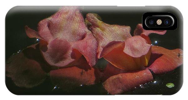 Blossom Rain 24 Phone Case by Georg Kickinger
