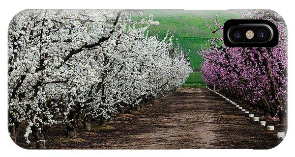 Blossom Standoff IPhone Case