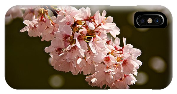 Blossoms And Petals Phone Case by Kathi Isserman