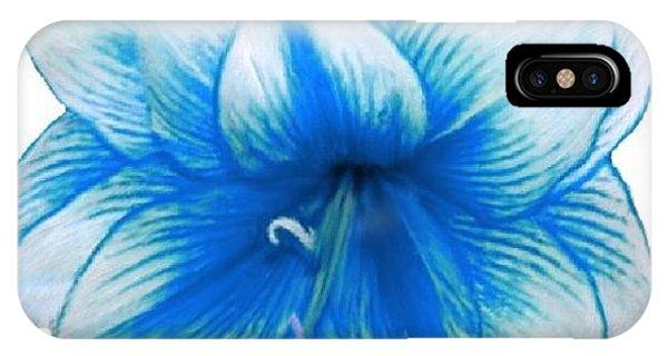 Blue Amaryllis IPhone Case
