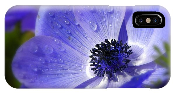 Blue Anemone IPhone Case