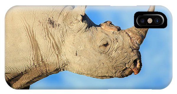 Blue Rhino iPhone Cases (Page #3 of 4)   Fine Art America
