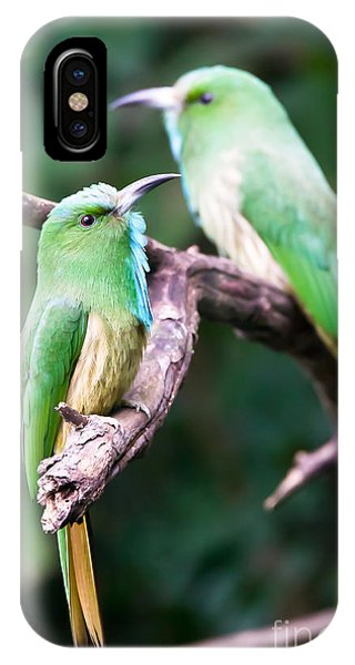 Blue-bearded Bee-eater IPhone Case