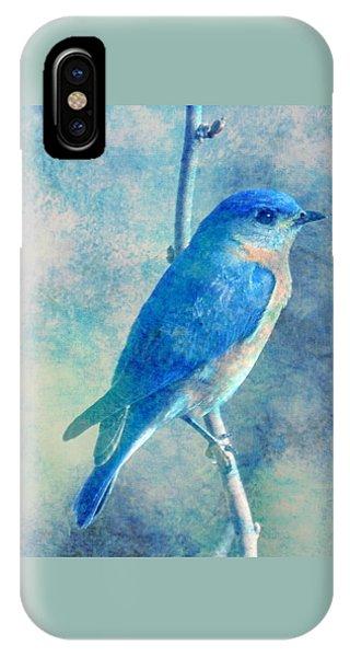Blue Bird Blue Sky IPhone Case