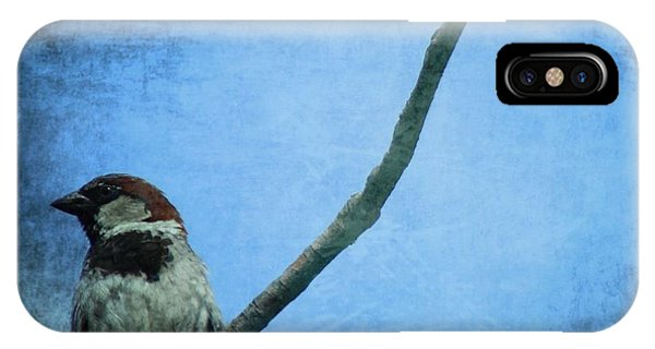 Sparrow On Blue IPhone Case