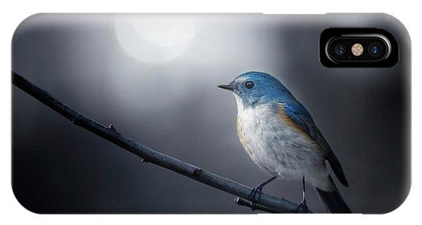 Branch iPhone Case - Blue Bird by Takashi Suzuki