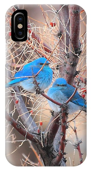 Blue Birds IPhone Case
