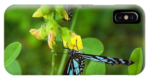 Tropes iPhone Case - Blue Butterflies In The Green Garden by Gina Koch