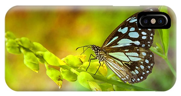 Blue Butterfly With Beautiful Colors Phone Case by Gina Koch