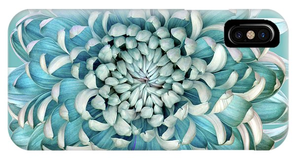 Teal iPhone Case - Blue Chrysanth by Brian Haslam