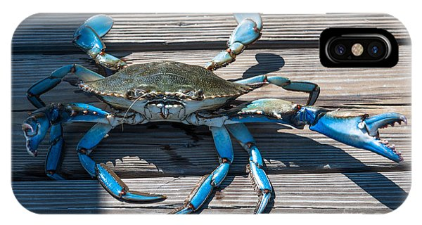 Blue Crab Pincher IPhone Case