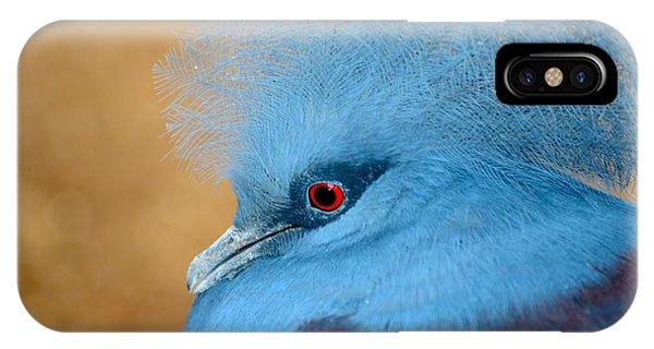 Blue Crowned Pigeon Phone Case by T C Brown
