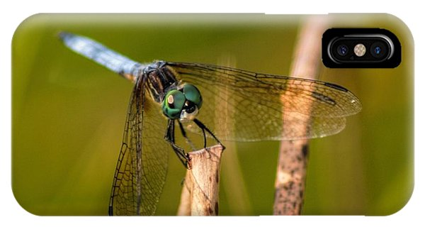 Blue Dasher IPhone Case