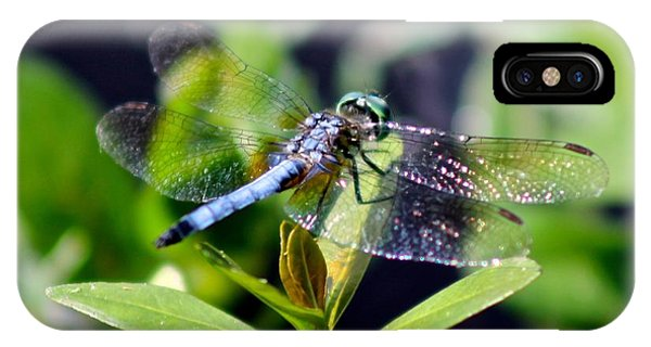 Blue Dragonfly Blue Dasher IPhone Case