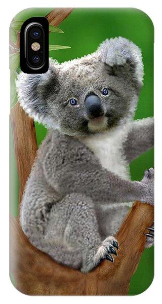 Blue-eyed Baby Koala IPhone Case