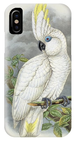 Blue-eyed Cockatoo IPhone Case