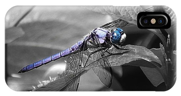 Blue Eyed Dragonfly IPhone Case