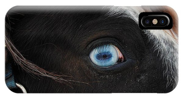 Blue Eyed Horse IPhone Case