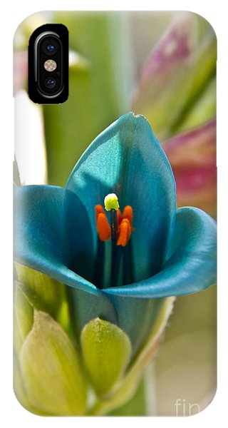 Blue Flower 1 IPhone Case