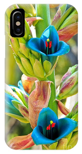 Blue Flower 2 IPhone Case