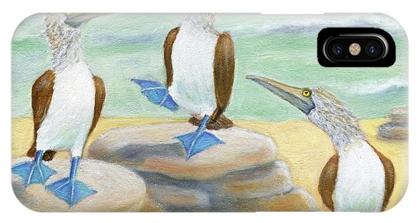Blue-footed Boobies IPhone Case