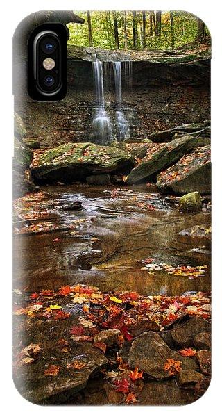 Blue Hen Falls In Autumn IPhone Case