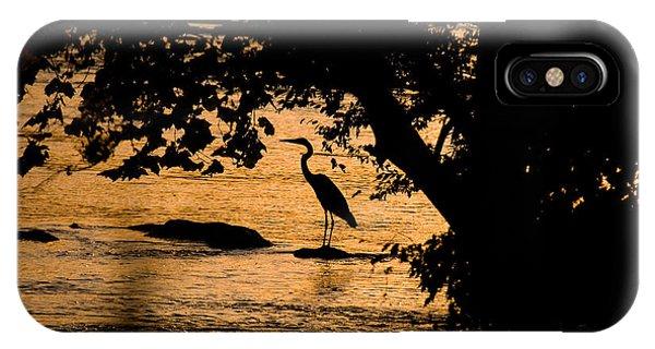 Blue Heron At Sunset IPhone Case