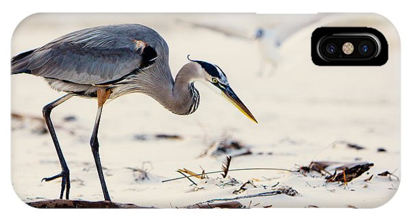 Beach iPhone Case - Blue Heron At The Beach by Joan McCool