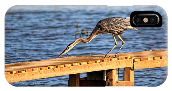 Blue Heron Dragonfly Lunch IPhone Case