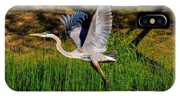 Blue Heron In Flight IPhone Case