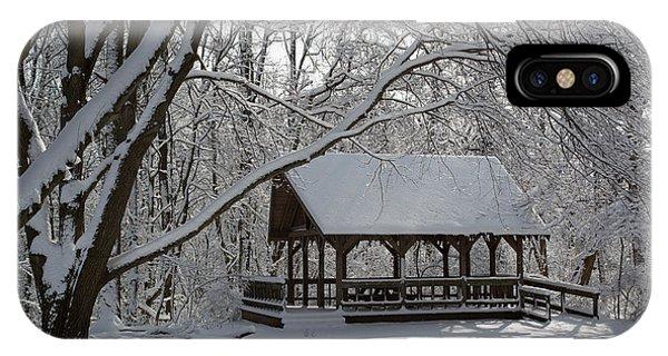 Blue Heron Park In Winter IPhone Case