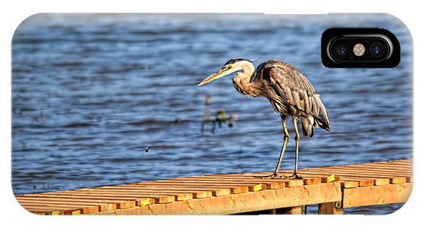 Blue Heron Spies The Dragonfly IPhone Case
