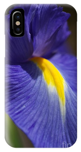 Blue Iris With Yellow IPhone Case