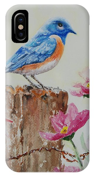 Blue Jewel IPhone Case