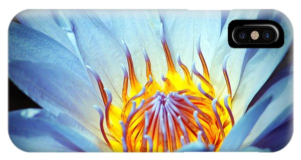 Blue Lotus IPhone Case