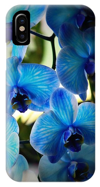 Orchid iPhone Case - Blue Monday by Mandy Shupp