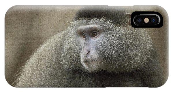 Blue Monkey IPhone Case