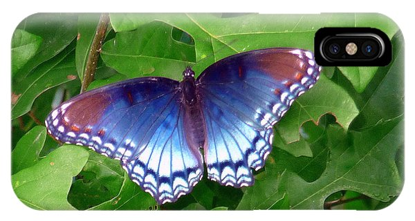 Red Spotted Purple Butterfly IPhone Case