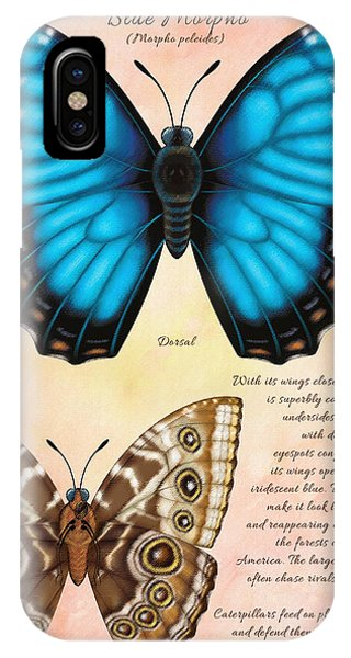 Blue Morpho Butterfly Phone Case by Tammy Yee