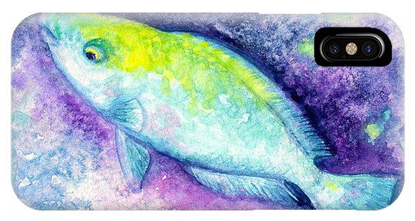 Blue Parrotfish IPhone Case