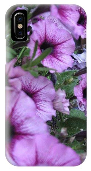 Blue Petunias IPhone Case