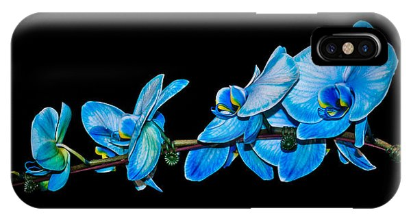 Blue Phalaenopsis Orchid IPhone Case